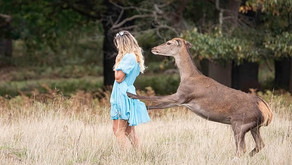 Deer attacks woman while taking a selfie