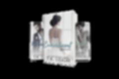 077-6x9-Book-Series-Presentation-COVERVA