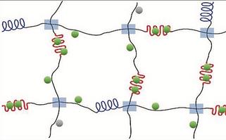 Silk Hydrogels Crosslinked by the Fenton Reaction