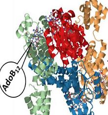 Dynamically tunable light responsive silk-elastin-like proteins