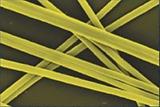 Silk Nanofibres