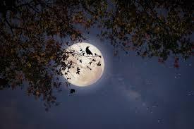 La lune des chasseurs 2021