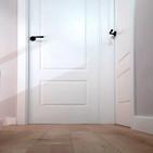 Puerta Lacada mod. 2R