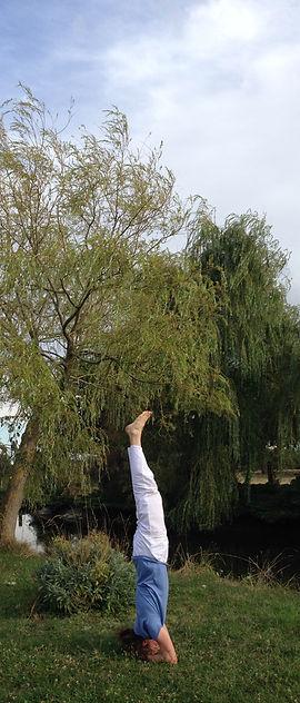 Posture inversée cours de yoga angers - yoga traditionnel angers