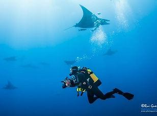 Diving_the_Azores_Baixa_do_Ambrosio_drea