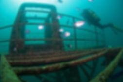 diving-in-ocean-revival-subacquatic-park
