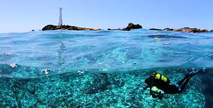 Diving-in-Azores-Portugal-always-the-bes