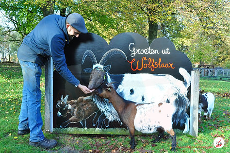 Cut-Out Photo Board Land Goats with Goat