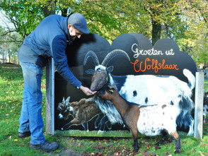 Cut-Out Photo Board Land Goats with Goats