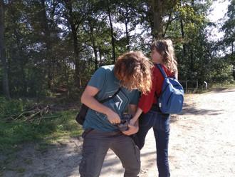 Equine Trails (hoof picking)