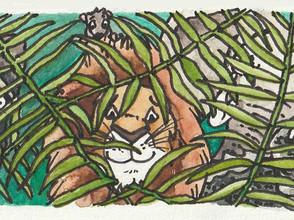 Pixi Books Illustration Contest 2019 ('De Koning van de Jungle') - illustration 2/3