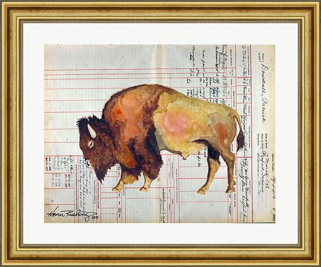 Ledger Art Bison Bull