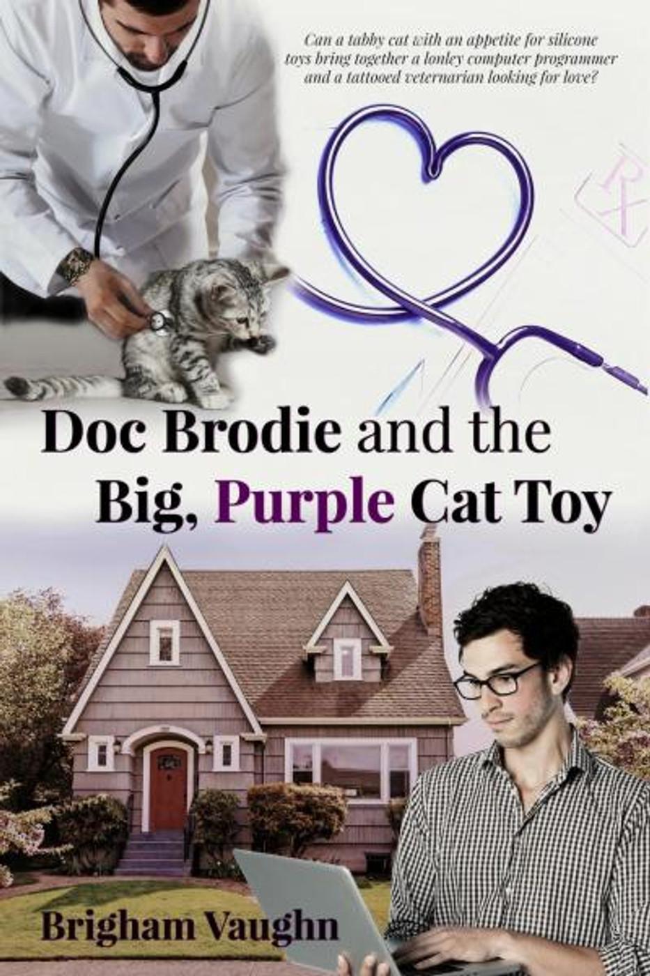 Doc Brodie and the Big, Purple Cat Toy - Brigham Vaughn