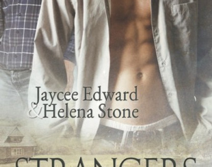 """Brigham's Recommendations – """"Strangers in the Night"""" by Jaycee Edward and He"""