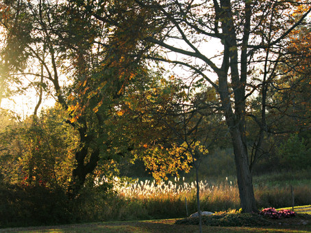 Photography – The Golden Hour #VantagePoint