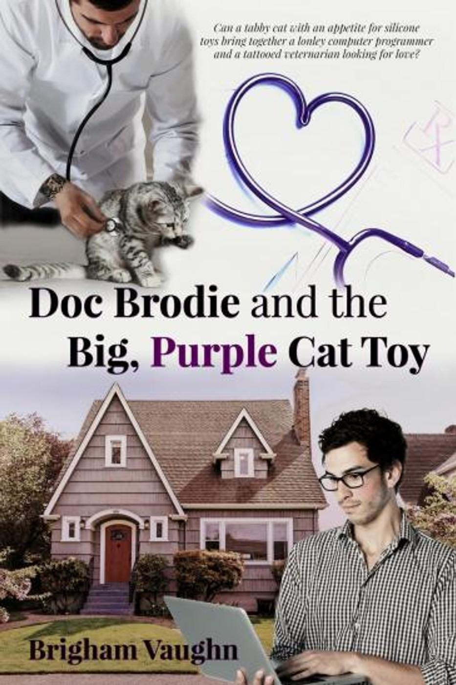 Doc Brodie and the Big, Purple Cat Toy - Brigham Vaughn.jpg