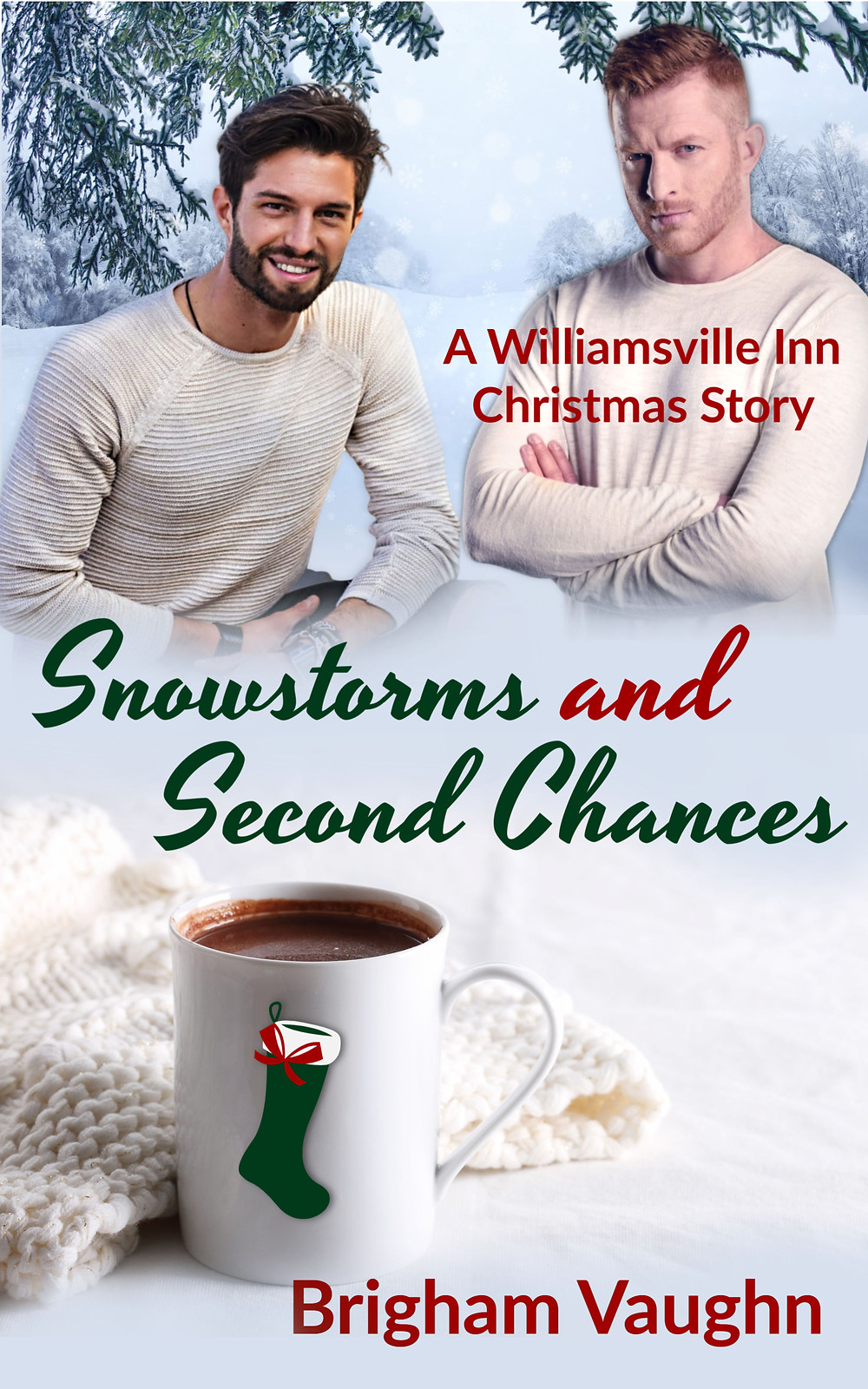 Snowstorms and Second Chances Cover  - Medium.jpg