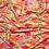 Thumbnail: Kashmir Tulipe