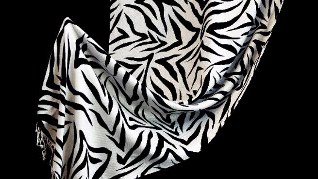 Mountain Zebra