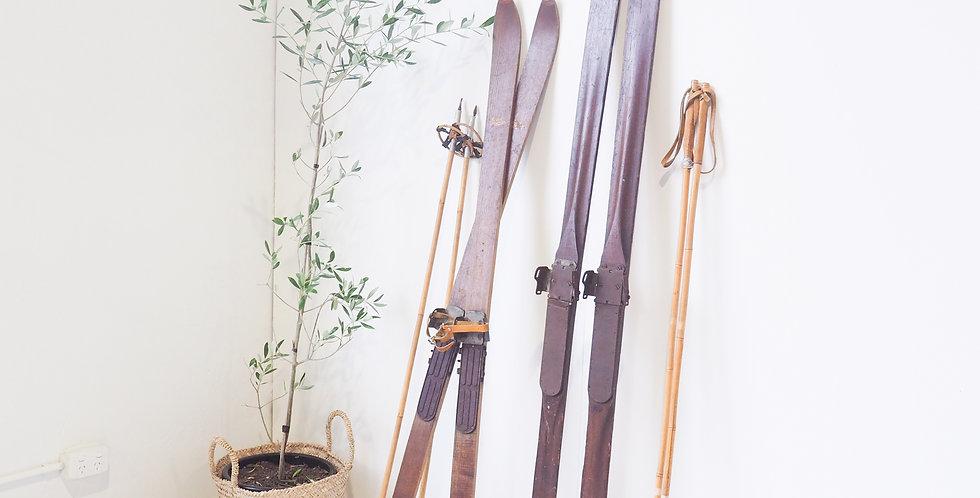 Vintage Timber Skis
