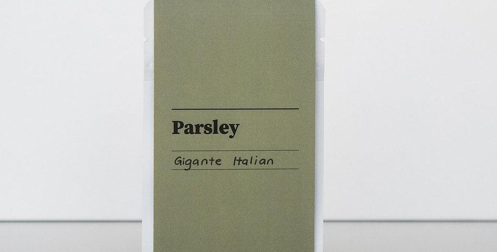 Gibson & Green Seeds - Parsley (Italian Gigante)