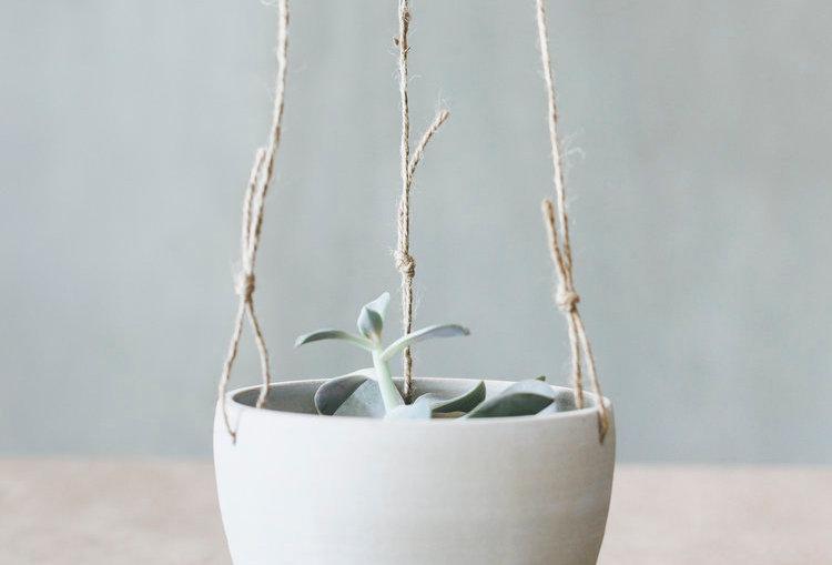 Notary Ceramics Hanging Planter