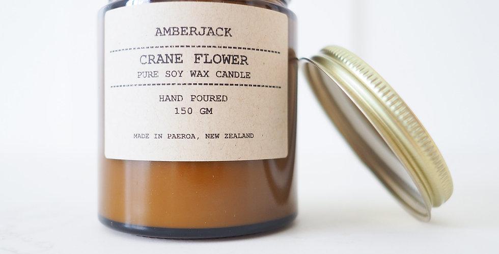 Amberjack Candle - Crane Flower