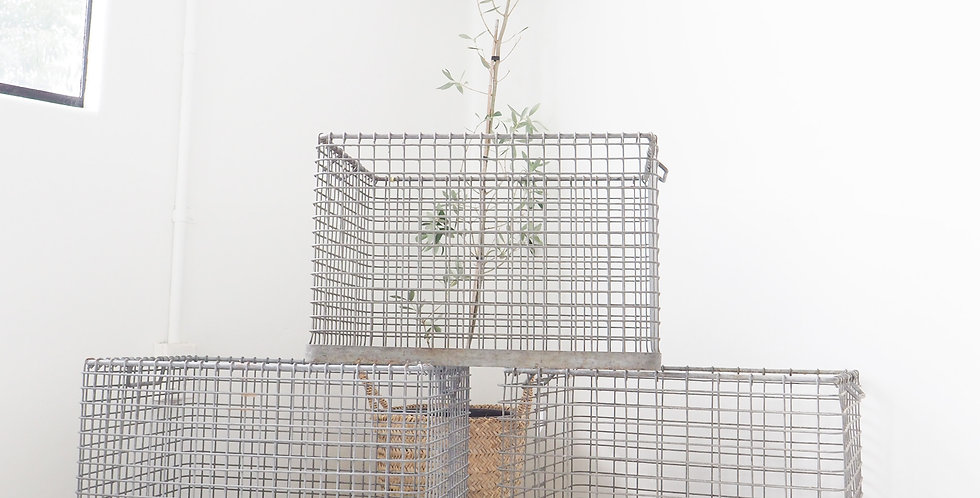 Wire Crate