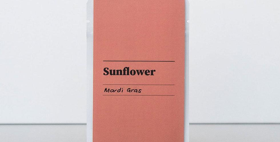 Gibson & Green Seeds - Sunflower (Mardi Gras)