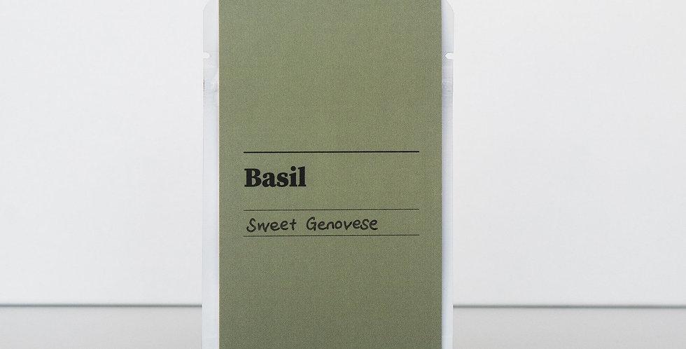Gibson & Green Seeds - Basil (Sweet Genovese)
