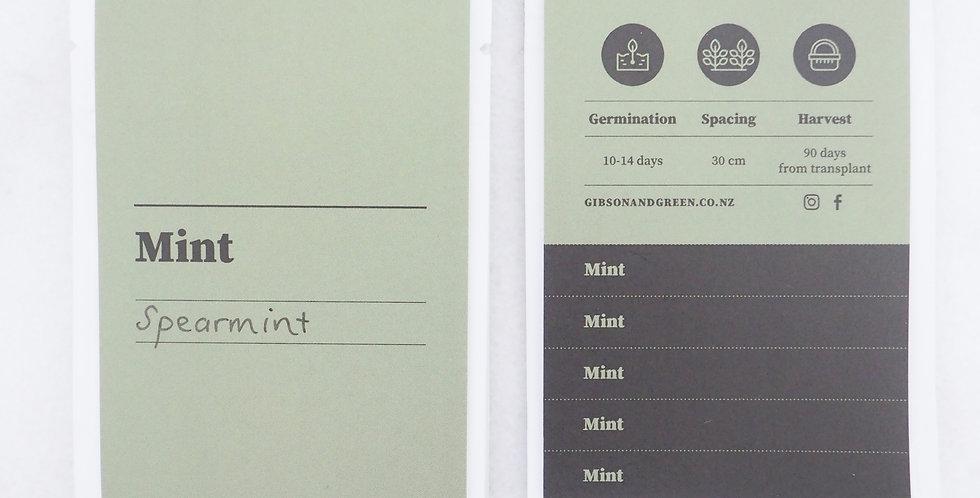 Gibson & Green Seeds - Mint (Spearmint)