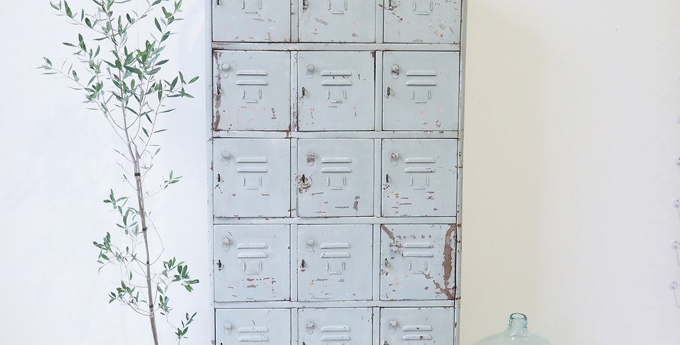 French Industrial Lockers