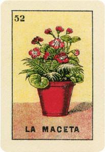 52. La Maceta Loteria.jpeg