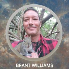 Brant Williams