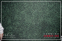 Sanmina's Summer BBQ GIF (30).mp4