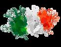 Italia al centro del progetto e del mondo