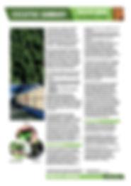 Sustainability_Executive_Summary_WEI.jpg