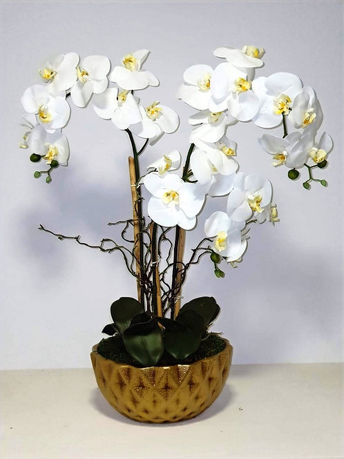 ORCHID ARRANGEMENT -GUESS ACD GOLD
