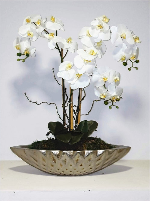 ORCHID ARRANGEMENT -BARCO GUESS ACD SILVER