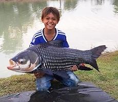 Udon Thani Business Index, Lek's Fishing Park