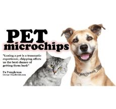 Thai Pet ID, Thailand Pet Services, Udon Thani Resource Guide, udonmap, udonguide, udonthanimap, udonthaniguide, udonmapclassifieds, udona2z, udonthaniclassifieds, udonthani, udonforum, udonthaniforum, udoninfo, expatinfoudonthani, #udona2z