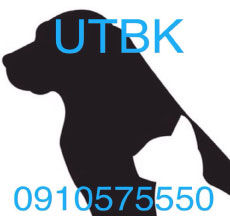 Udon Thani Kennels, Udon Thani Pet Care, udon thani animal care, udon thani resource guide, udonmap, udonguide, udonthanimap, udonthaniguide, udonmapclassifieds, udona2z, udonthaniclassifieds, udonthani, udoninfo, udon thani info, udon thani information, udonforum, udonthaniforum, udoninfo, leeyaresort, leeyaresortudon, expatinfoudonthani, #udona2z, #leeyaresort, udonthaniadvice, #udonthaniadvice