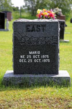 Mario East