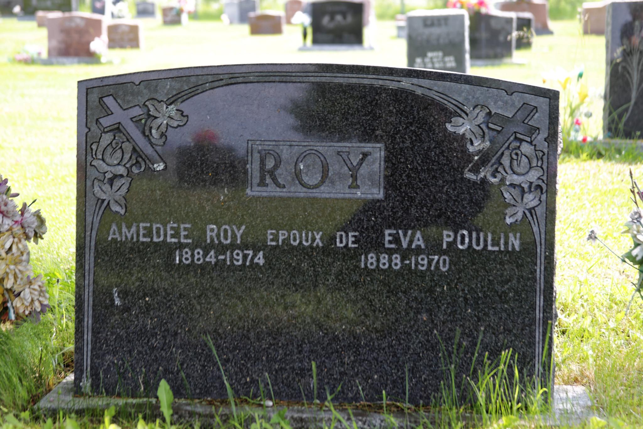 Amédée Roy