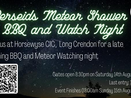 Perseids Meteor Shower Night