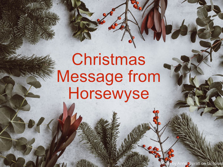 Merry Christmas from all at Horsewyse!