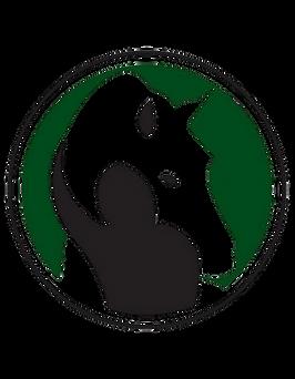 transparent Horsewyse logo