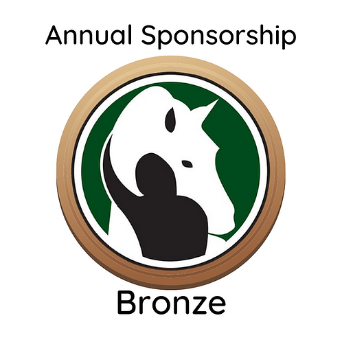 Annual Bronze Sponsorship