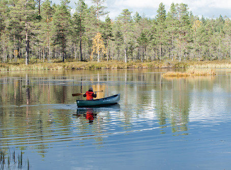 Lauhanvuori - Hämeenkangas UNESCO Global Geopark as new member of the #GEOfood family!
