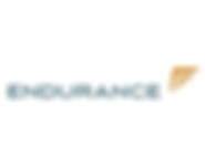 Endurance-trp capital partners